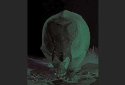 dinasor_401961797 اكتشاف حيوان ضخم عاش خلال فترة الديناصورات Actualités