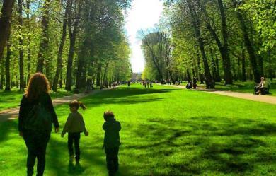 promenade_241409078 دراسة: المشي في الغابات والحدائق له تأثير سحري على الإجهاد sport