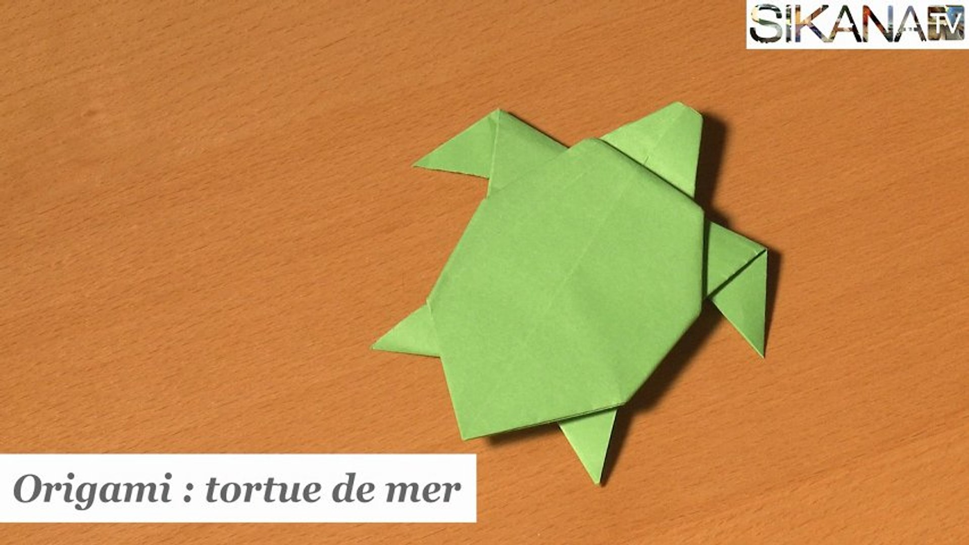 Origami Tortue De Mer Hd Video Dailymotion