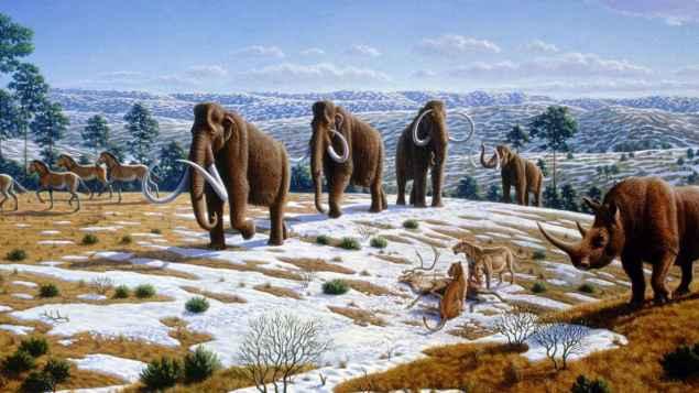 Resultado de imagen de mamut resucitar