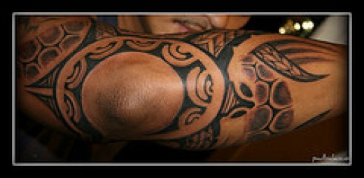 Tribal Turtle Tattoos Designs. Click thumbnail to view full-size