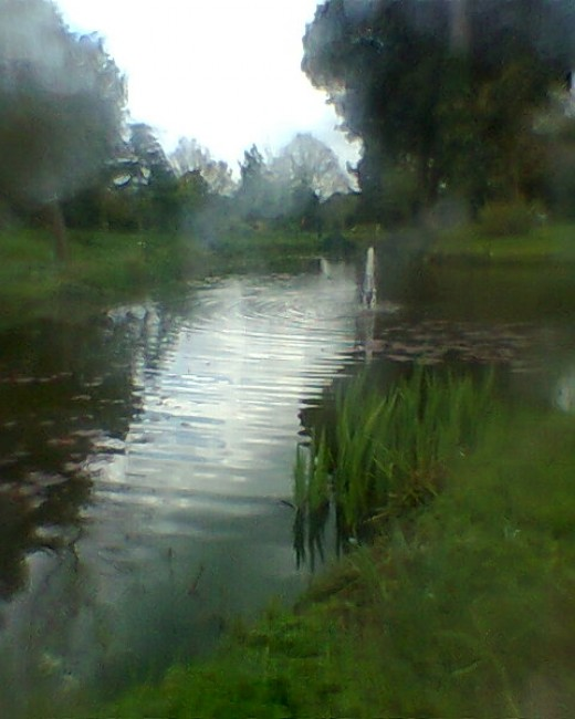 Lake in gardens of Lea Valley water UK