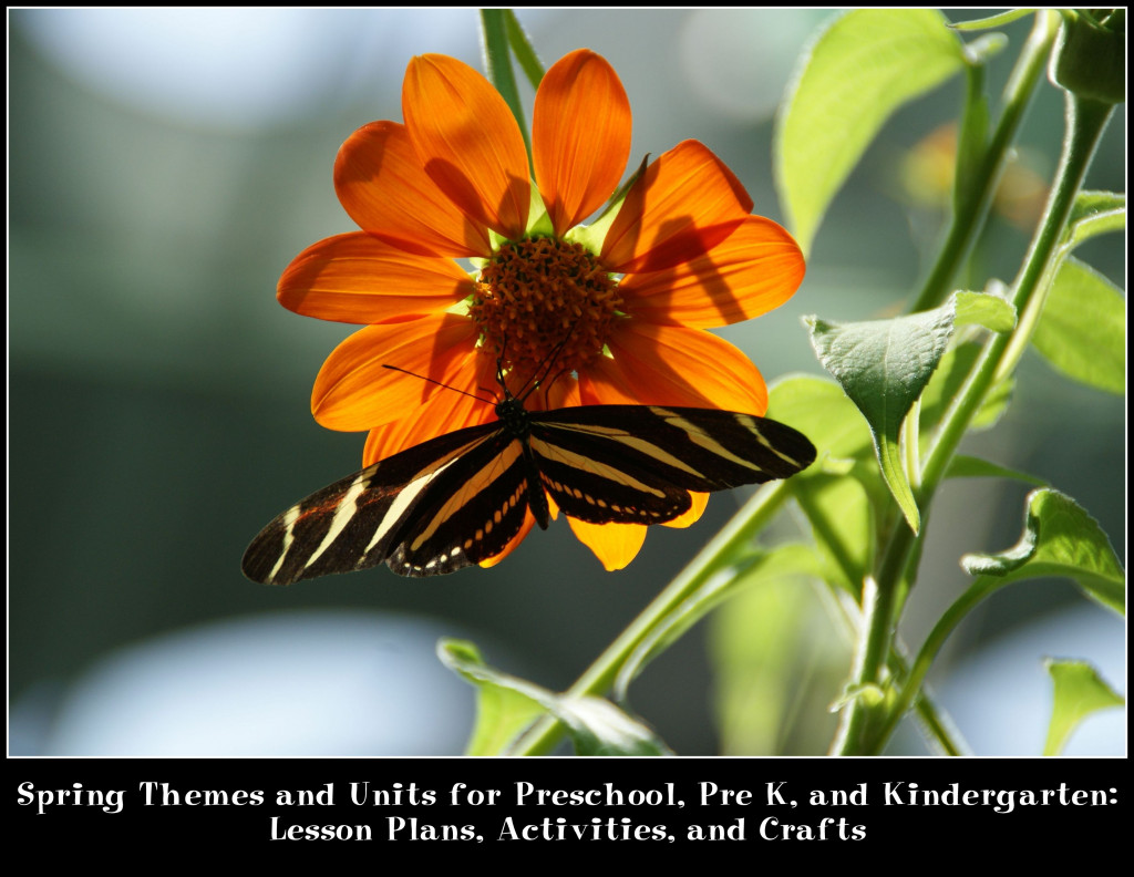 Spring Themes And Units For Preschool Pre K And Kindergarten Lesson Plans Activities And Crafts