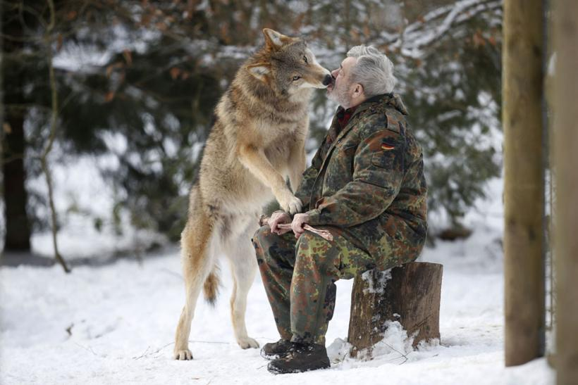 Freund And His Wolf