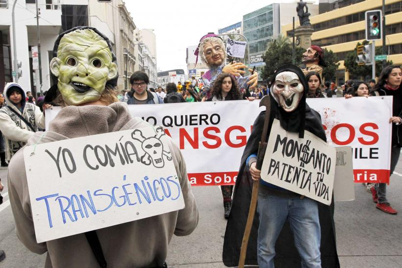 March Against Monsanto, Valparaiso, Chile