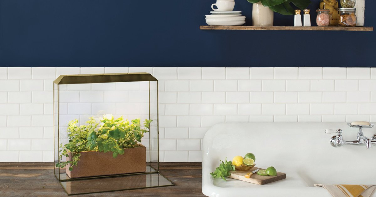 Growhouse By Modern Sprout InsideHook