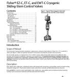 Emerson Fisher Easy E Ewt C Instruction Manual Manualzz