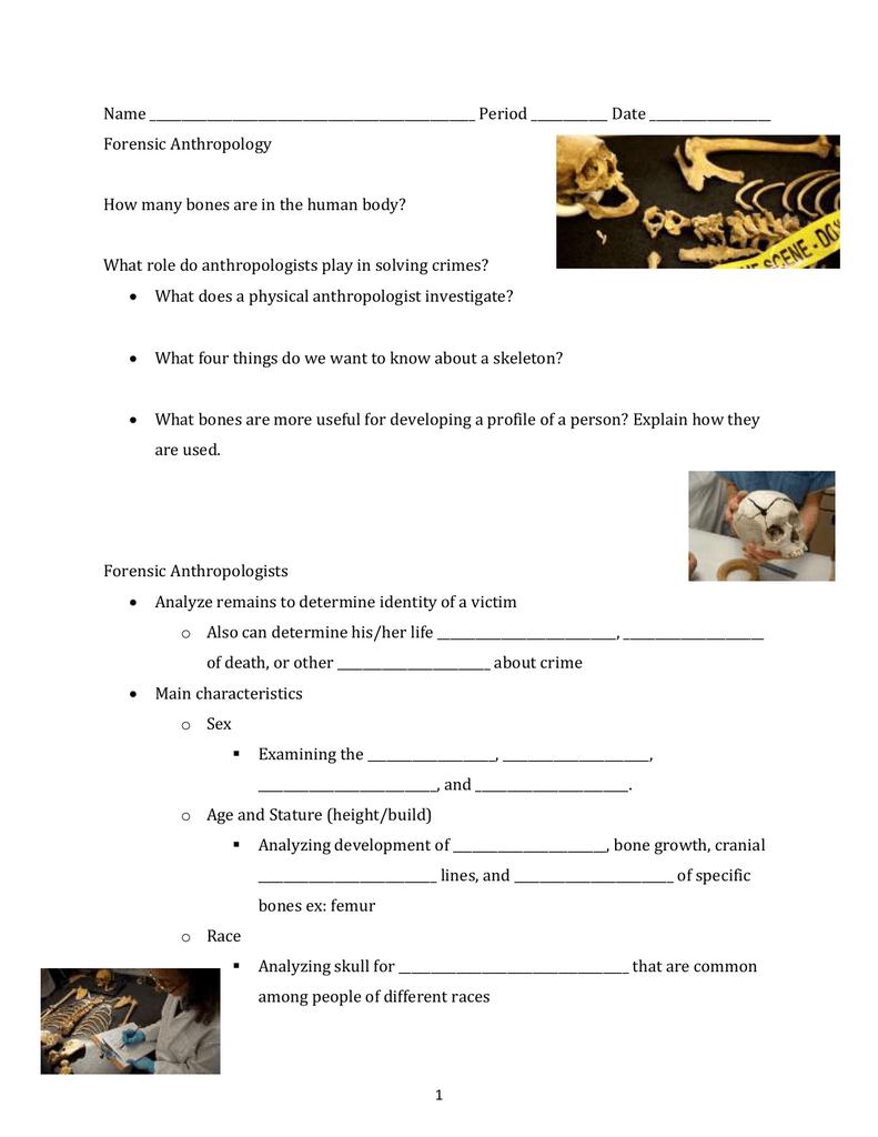 Forensic Anthropology Skeleton Notes