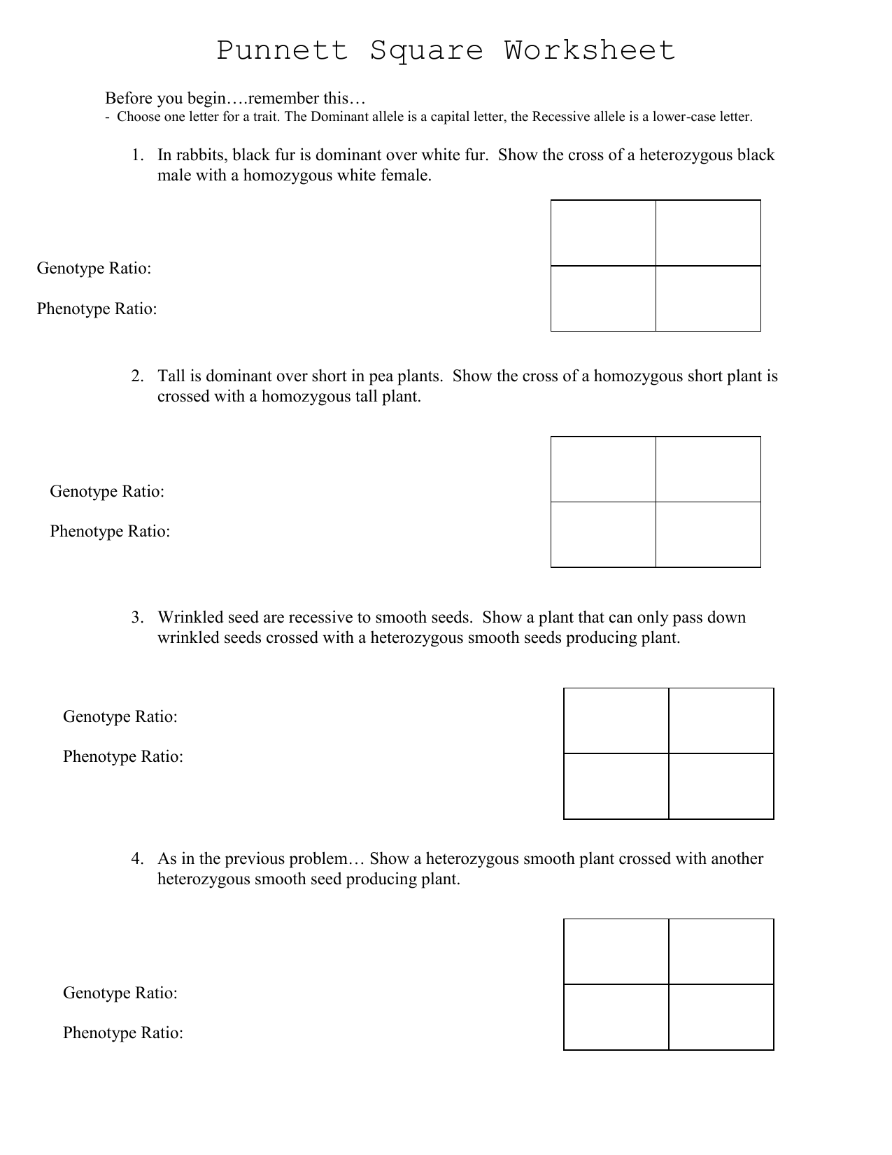 Punnett Square Worksheet 1 Answers