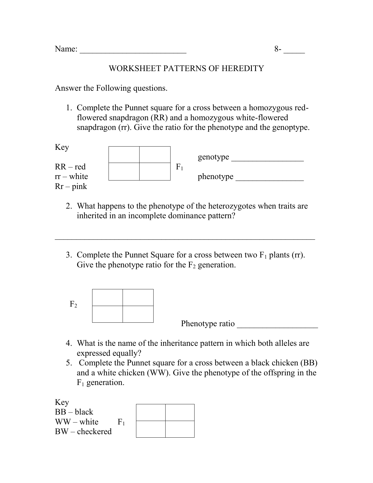 Worksheet Dna The Molecule Of Heredity Worksheet Key