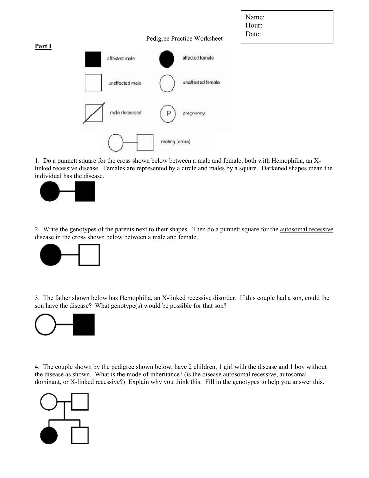 Pedigrees Practice Worksheet Answers