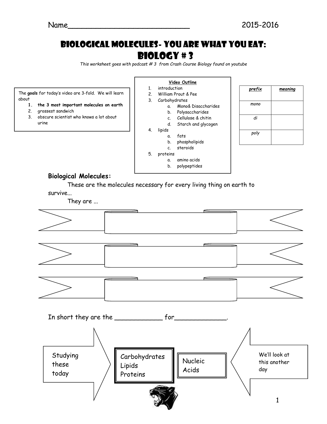 Molecular Biology Worksheet Answers