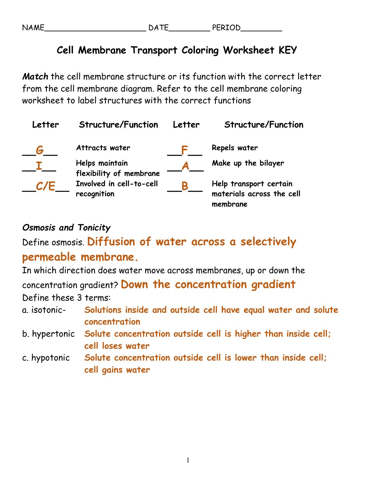 30 Plasma Membrane Coloring Worksheet