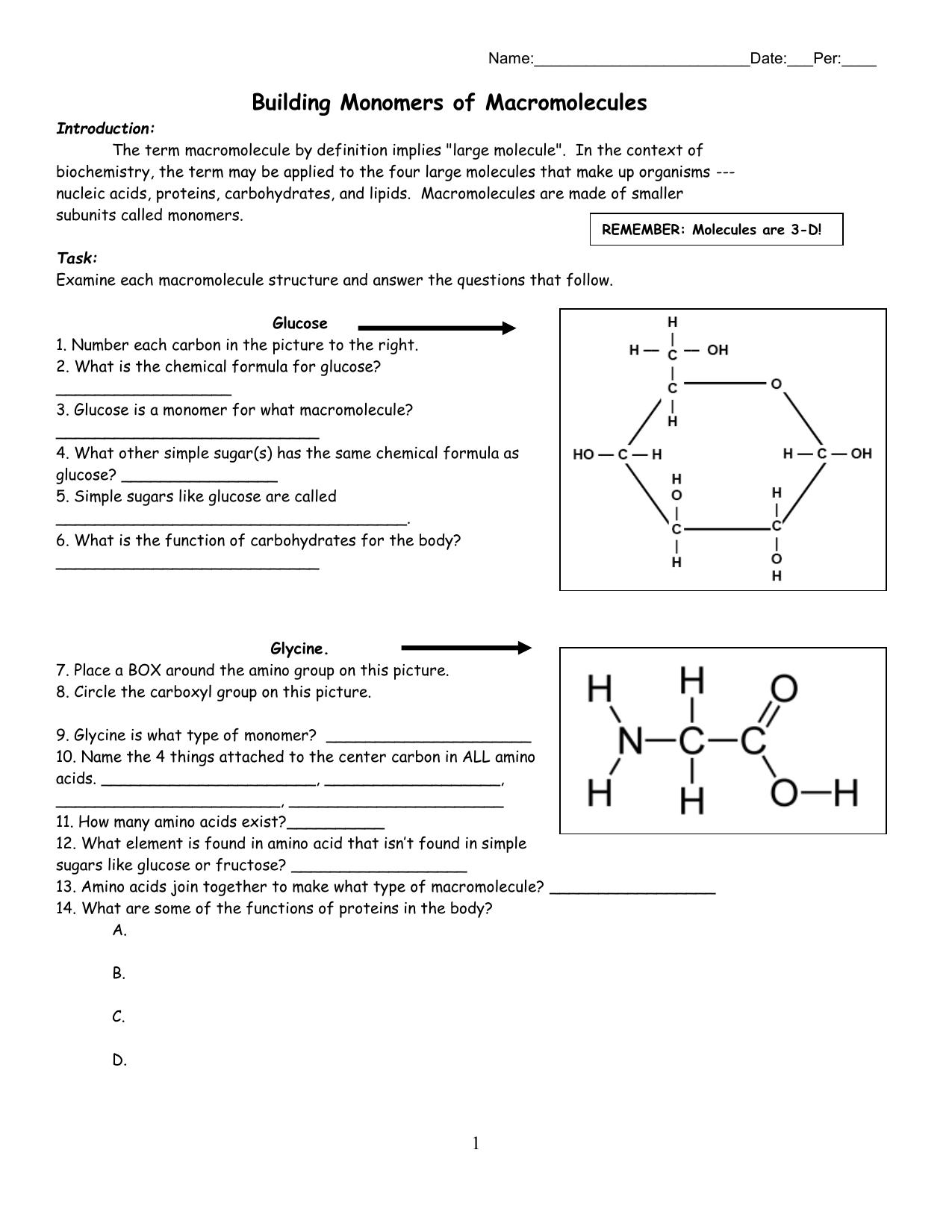 Building Monomers Of Macromolecules Worksheet Answers