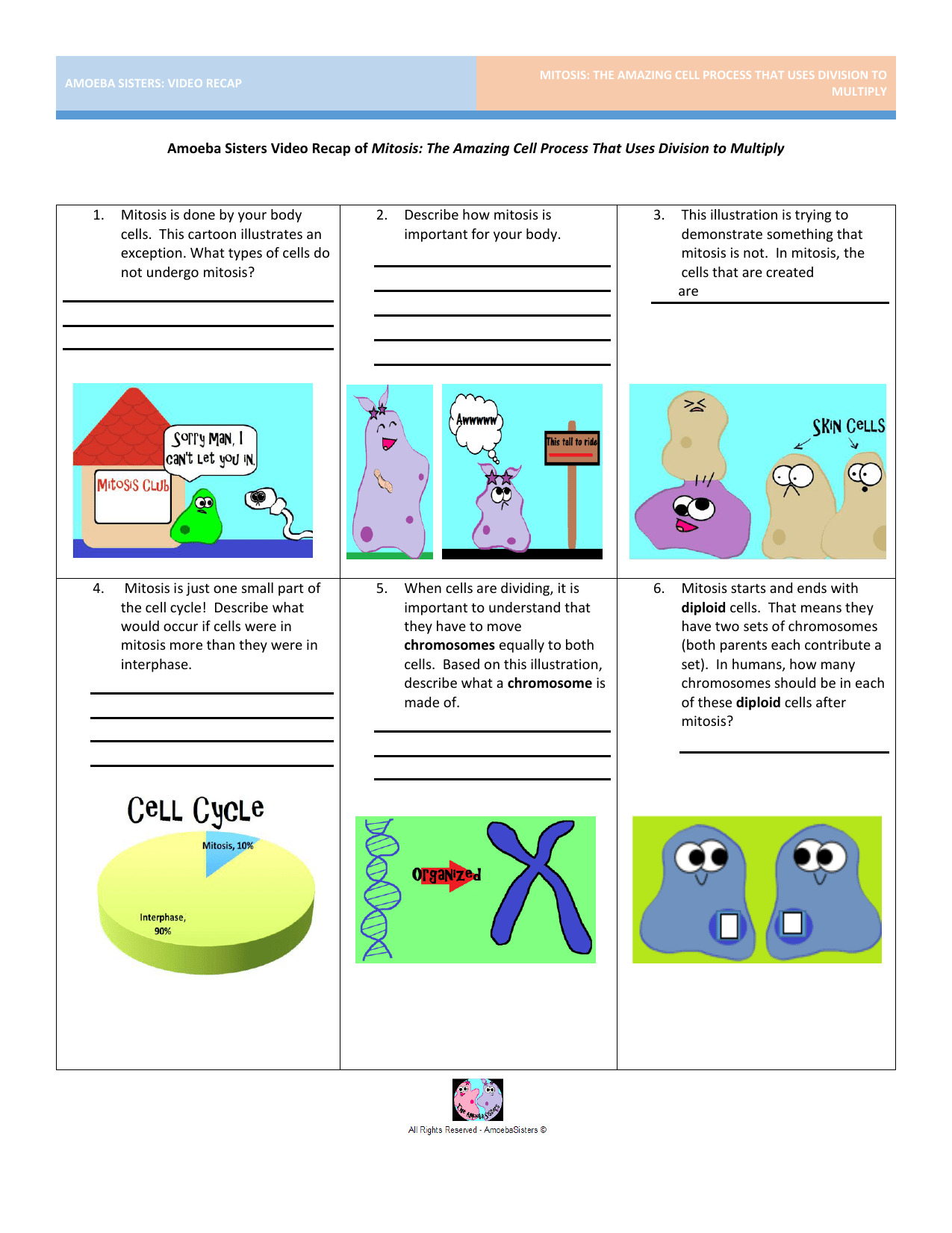 Taxonomy Worksheet Amoeba Sisters