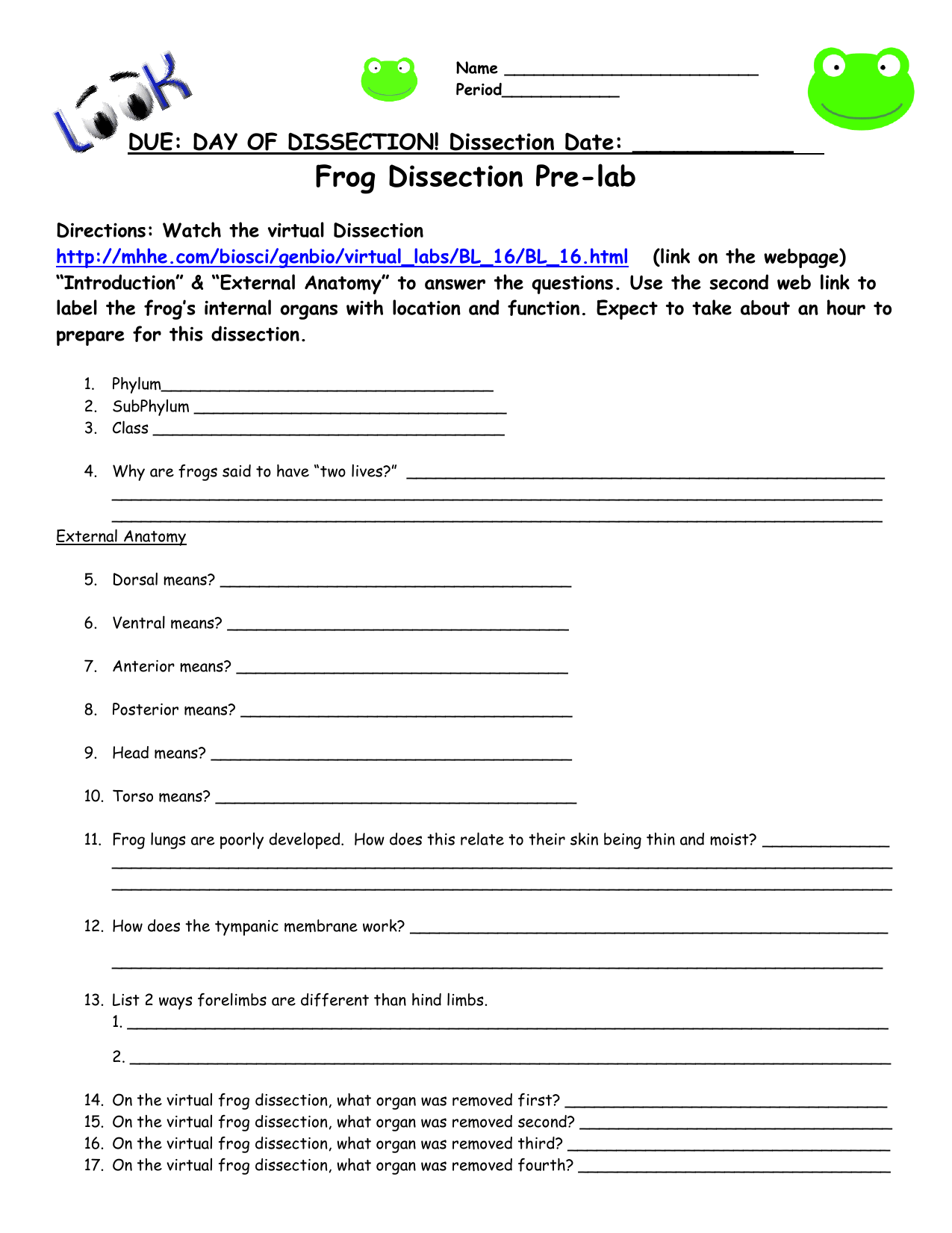 30 Frog Dissection Diagram Labeled Worksheet