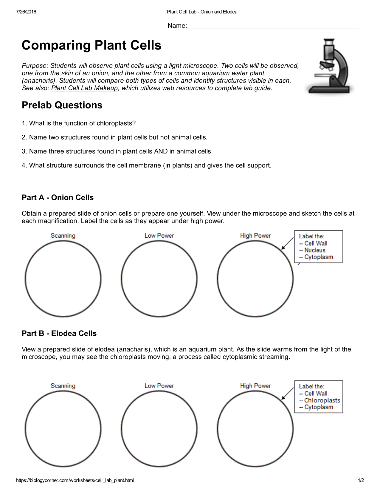 35 Label Plant And Animal Cells Worksheet