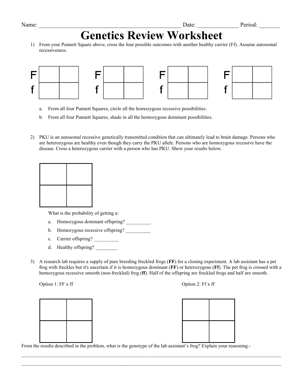 Punnett Square Review Worksheet