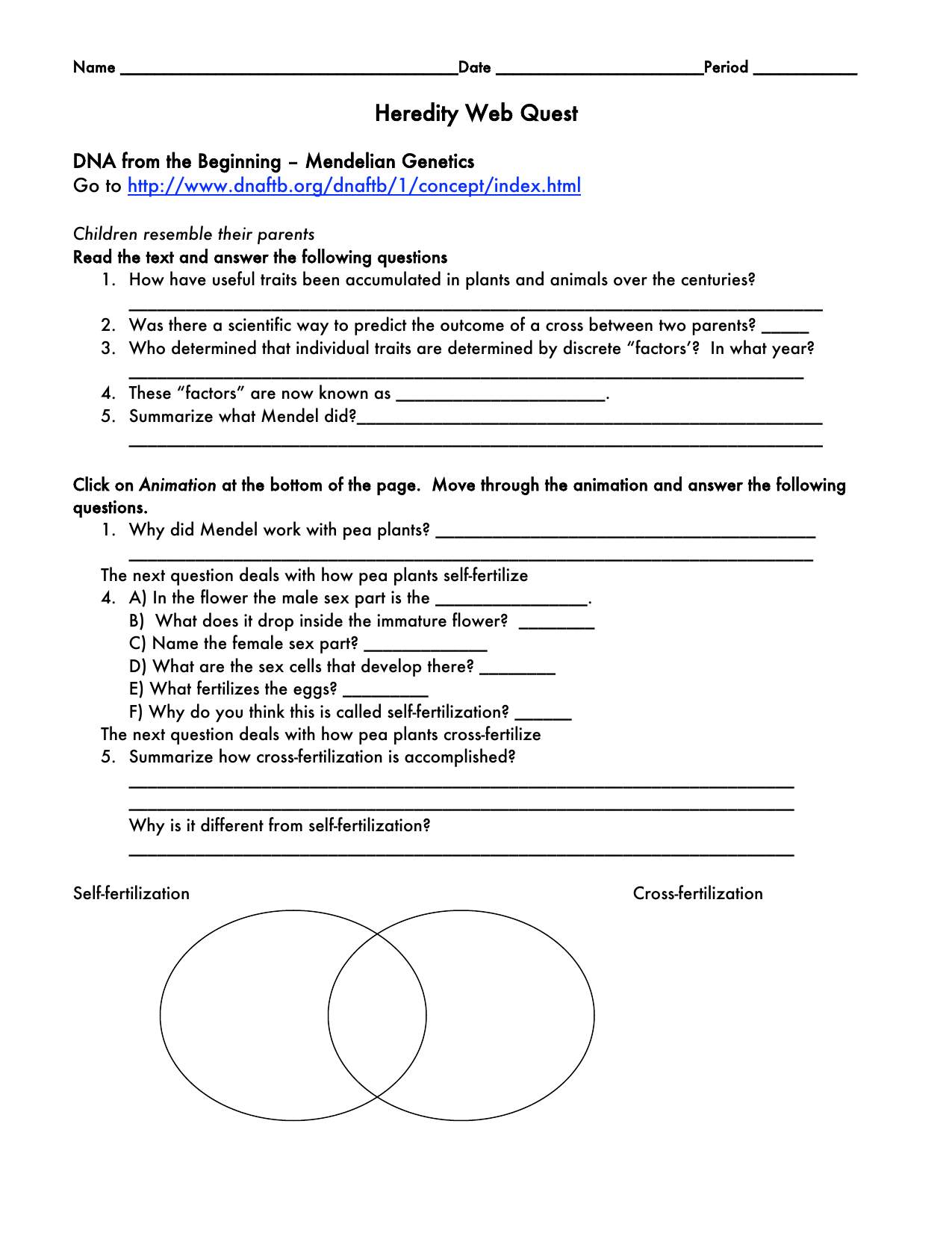Genetics Webquest Worksheet Answers