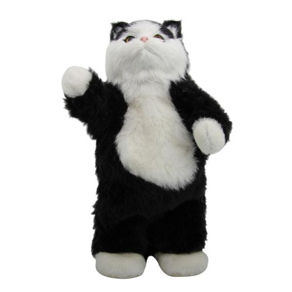 Dancing Cat Speaker IWOOT