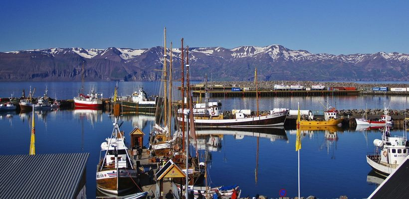 Исландский залив Скьяульванди: место, где встречаются с китами