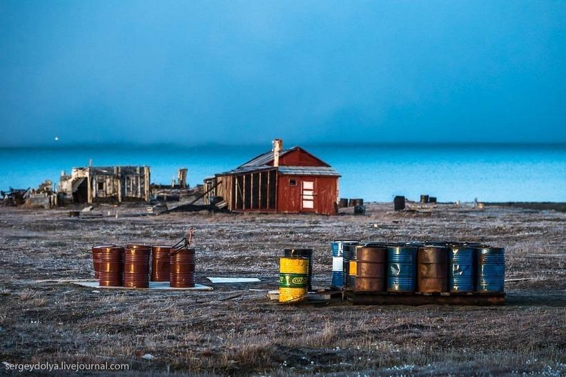 Остров Врангеля — последнее пристанище мамонта и остров белых медведей
