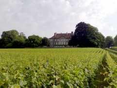 Saint-Saphorin-sur-Morges_Castle