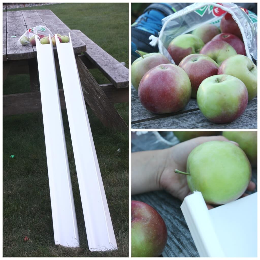 The Best Apple Science Activities For Grades Prek 2