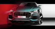 2019_Audi_Q8_1