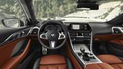 2019_BMW_8_Series_36