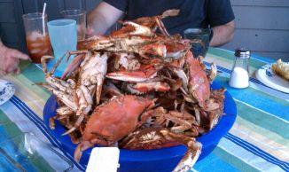 """Welcome back to Charleston"" dinner. Yum!"
