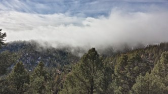 Mt. Pinos summit in clouds