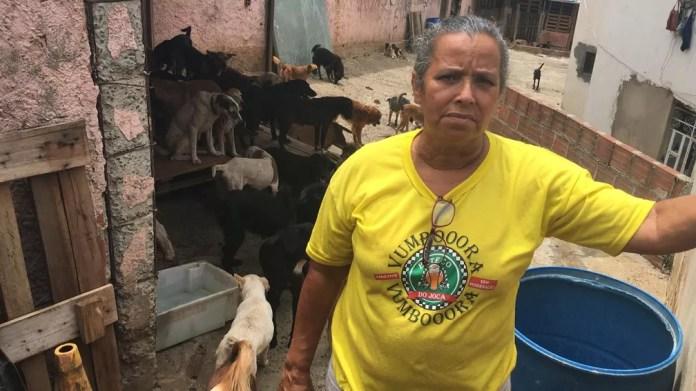 Ângela começou a recolher animais da rua no final dos anos 90, quando morava no bairro de Pirajá, em Salvador — Foto: Alan Alves/G1