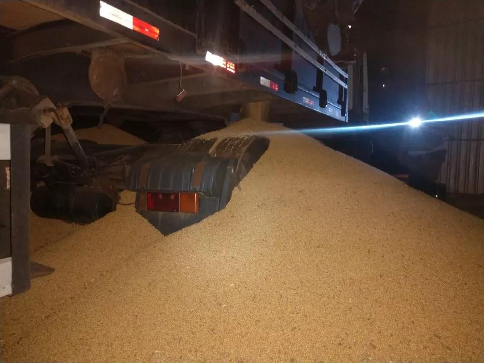 Droga estava escondida em fundo falso de caminhão que carregava soja — Foto: Cedida/Polícia Rodoviária