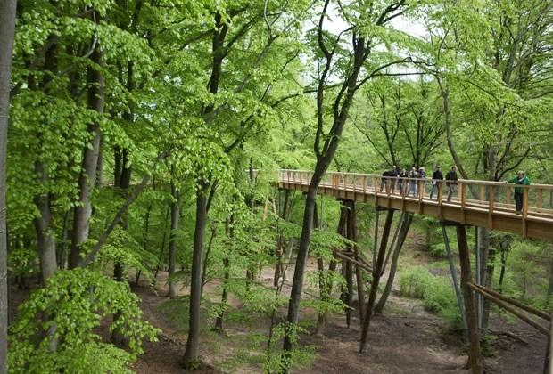 Visitantes andam por trilha dentro da reserva (Foto: Jens Buettner / Germany Out)