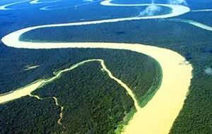 Amazonia (Foto: Divulgação)