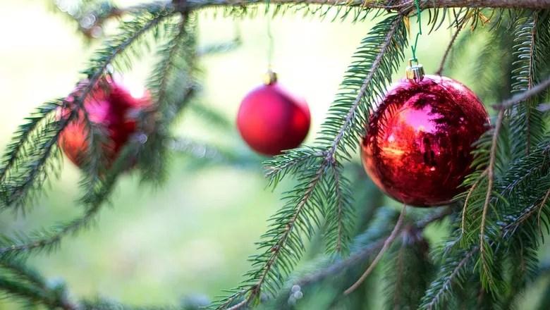 enfeite-pinheiro-natal-natural-arvore (Foto: Pixabay/Jill111/Creative Commons)