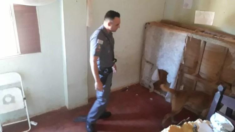 Homem é preso por prender e torturar mulher com choques elétricos em chácara em Santa Cruz do Rio Pardo — Foto: Polícia Militar/Divulgação