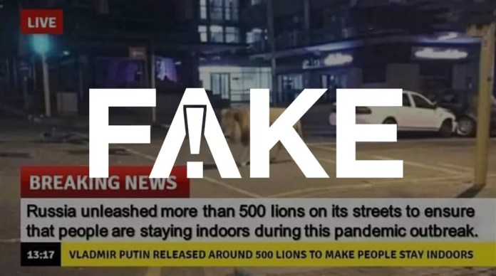 É #FAKE que governo russo soltou leões na rua pra amedrontar e evitar que pessoas saiam — Foto: Reprodução