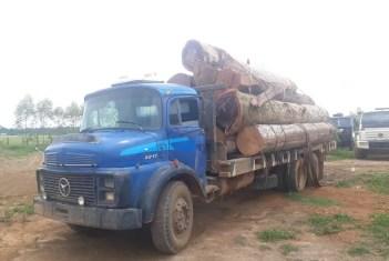 Caminhão já estava carregado e pronto para sair com as toras em Candeias (RO) — Foto: BPM/Divulgação