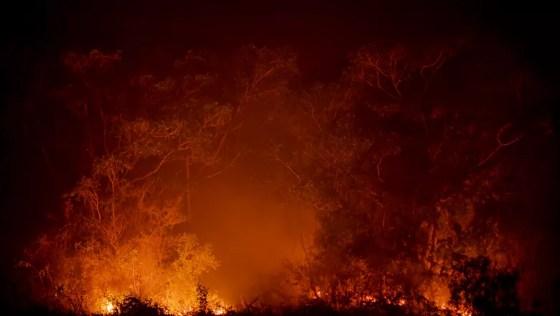 Fogo no Pantanal (Foto: José Medeiros/Globo Rural)