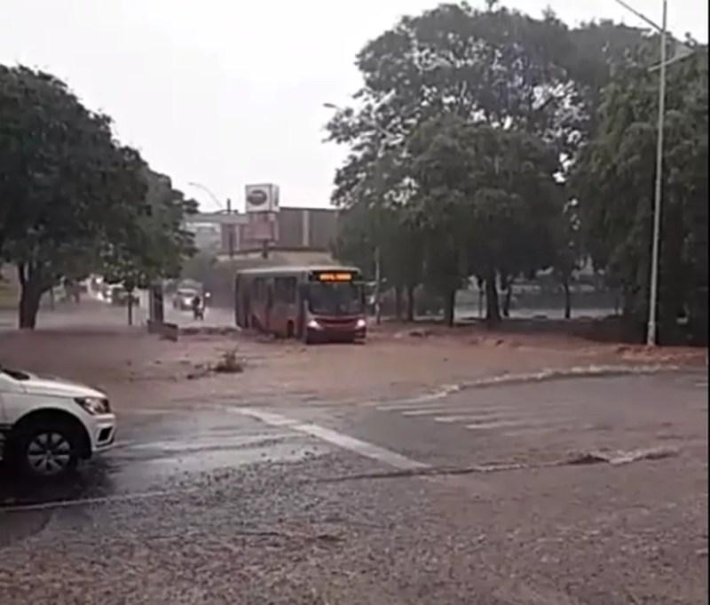 Ônibus passa pela água na Avenida Murchid Homsi em Rio Preto — Foto: Arquivo Pessoal
