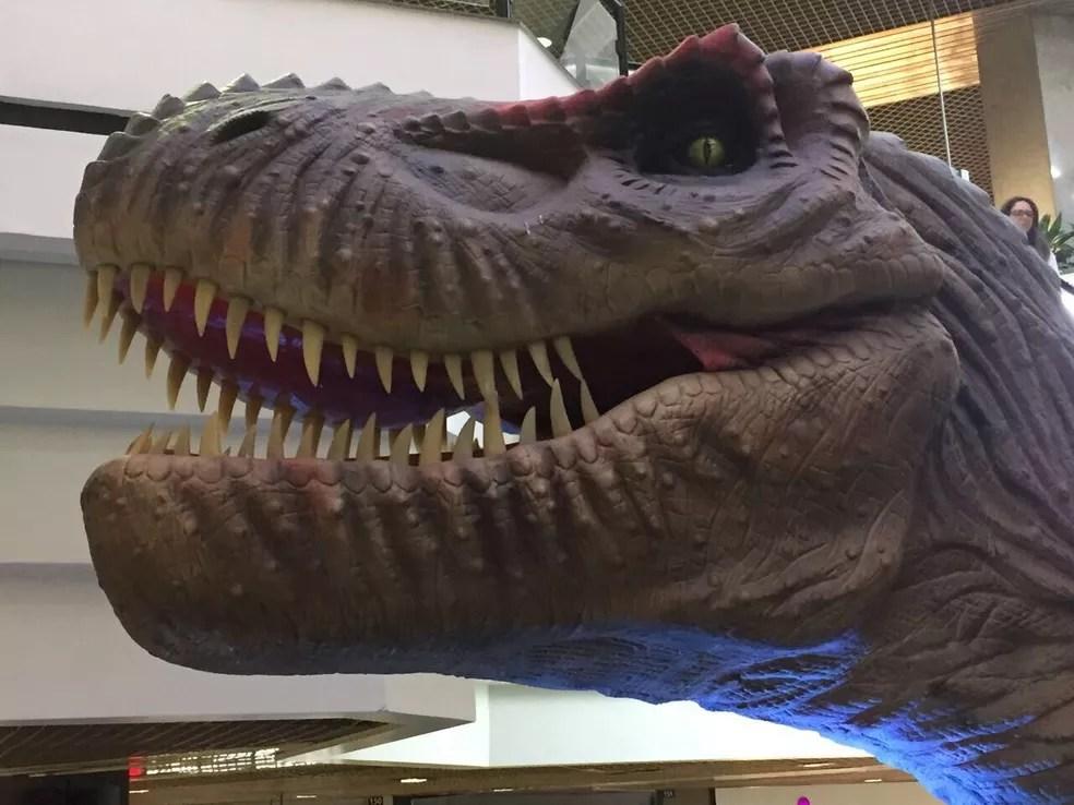 Exposição Mundo Jurássico vai até 18 de junho em Florianópolis (Foto: Divulgação)