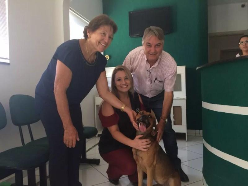 Funcionários do hospital ajudaram para que o Campeão ganhasse um novo lar (Foto: Marcos Lavezo/G1)