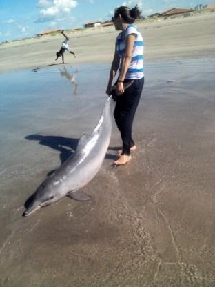 Jovem retirou golfinho da água após verificar que o animal estava exalando muito mau cheiro (Foto: Jordana Lima)