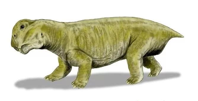 o lystrossaurus (Foto: wikimedia commons)