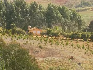 Fazenda seita em Minduri (Foto: Reprodução EPTV)