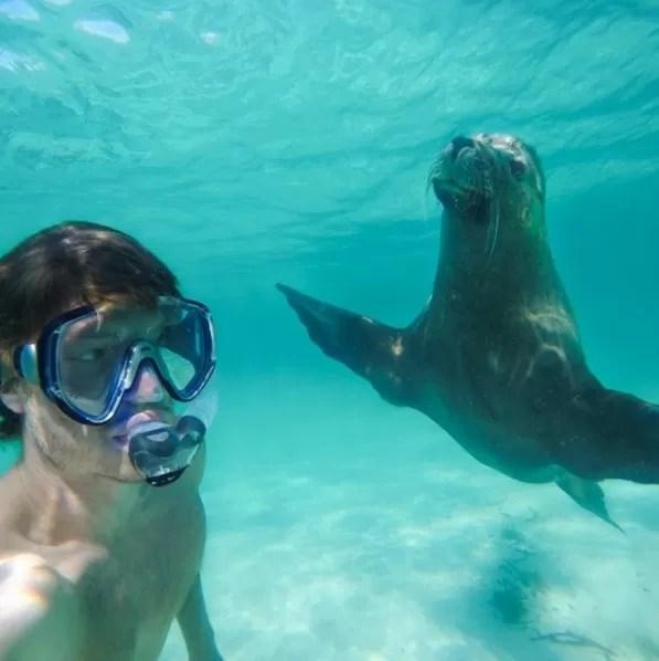 Slefie no mar da Austrália com leão-marinho