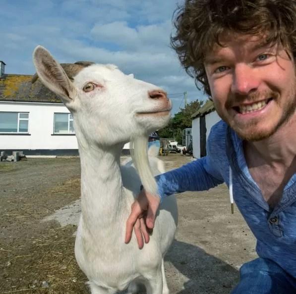 Uma dica de Allan: não se aproxime de um animal que não pareça amigável