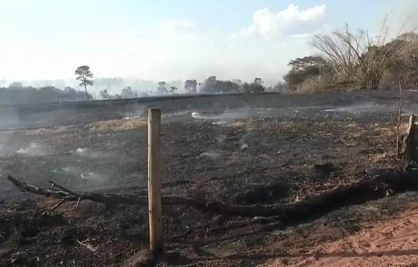 Fazenda do Estado em Andradina (SP) após incêndio  (Foto: Reprodução TV TEM)